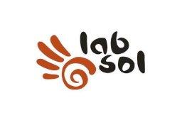 LabSol Logo
